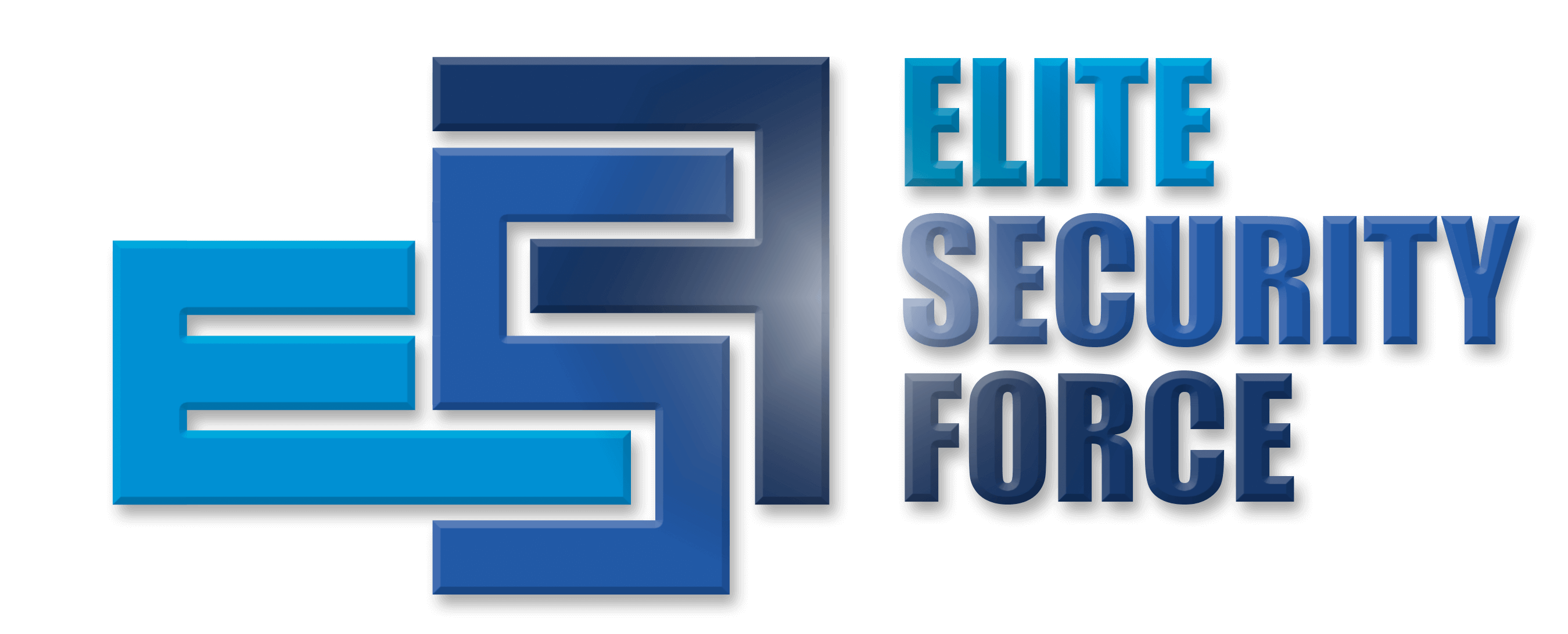 Elite Security Force